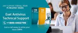 ESET antivirus Support Phone Number