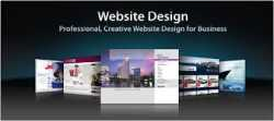 make your website @3000 Only