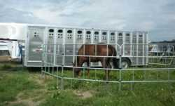 Galvanized Portable Corrals Include Standard and Mini Corrals