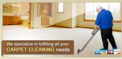 Sun Devil Carpet Cleaning
