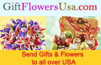 Christmas day special gifts for the people USA