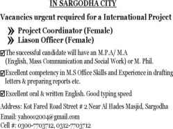 Project Coordinator, Liason Officer, Office Assistant
