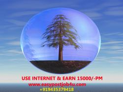 Extra Cash at your free time / Earn from home by Ad Posting / Earn more money with Data Entry Jobs