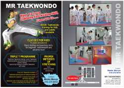 Taekwondo classes in puchong