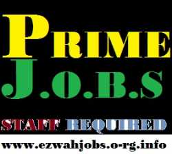 Part Time Staff Required (CASH IN HANDS)