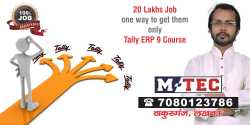 Accounting, Tally, Excutive Professional Tally Training in Lucknow India M-TEC