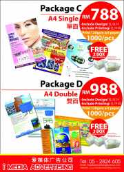 Promotion A4 Flyer design package with free printing