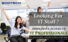 IT Staffing Services Company