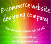 Ecommerce website designing company in pune